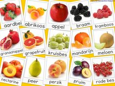 Groentenkalender - Yahoo Image Search Results
