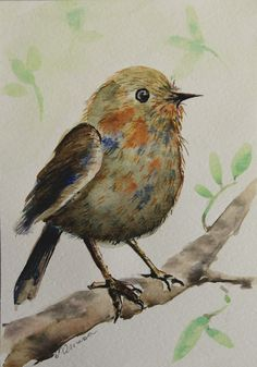 Watercolor paintings Bird on branch Watercolor painting