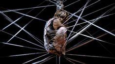 29 febrero / 10 marzo   Petra, la mujer araña y el putón de la Abeja Maya  En este nuevo espectáculo de danza-teatro, Sol Picó nos propone una reflexión sobre la monstruosidad y el amor, trasladándonos al reino del teatro físico y visceral. Esta obra indaga en temas de poder, obsesión, violencia y humillación, monstruos que al anidar en las relaciones humanas, las destruyen.   Matadero Madrid. Naves del Español