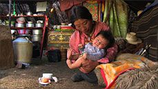 Summer Pastures: Nomadic herders in Tibet's high grasslands, depend on their yaks for survival. But as their community is being decimated by rapid modernization, they are forced to choose between their traditional way of life and their daughter's future.
