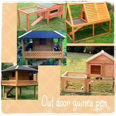 Next project outdoor guinea pig pen for the yard