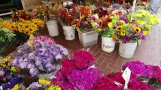 http://www.webjam.com/floristssanfrancisco  Same Day Delivery San Francisco - Read Full Article  Flower Delivery San Francisco,Sf Flower Mart,San Francisco Flower Delivery,Flower Mart Sf,Florists San Francisco