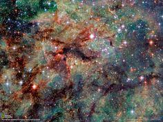 タランチュラ星雲 | ナショナル ジオグラフィック(NATIONAL GEOGRAPHIC) 日本版公式サイト