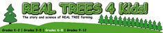REAL TREES 4 Kids! - Menu: Grades 6-8. Some great integration facts for Research week 5