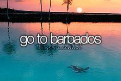 """"""" Go to Barbados. """""""