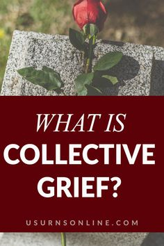 Are you experience collective grief? If so, you are in the right article! We go over just exactly what collective grief is, how it is different than regular grief, and healthy tips for you to process this type of grief Are You Experienced, Dealing With Grief, Grief Loss, Things To Know, Healthy Tips, Memories, Type, Collection, Memoirs