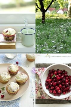 cranberry and muffins, love it¡¡  www.foodandcook.net