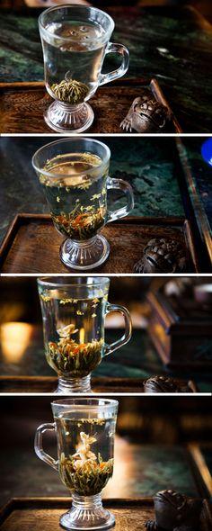 Tea Ceremony at Old Shanghai Teahouse, Fangbang Road Shanghai (yu yuan gardens) Asian Tea, Old Shanghai, Perfect Cup Of Tea, Chinese Tea, Chinese Style, Oolong Tea, Flower Tea, Tea Ceremony, Tea Time