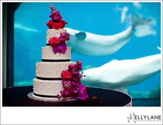 Aquarium Wedding Details- EllyB Events-5