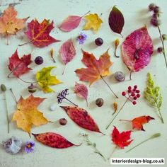 Join Us For Fall Colours Week! - http://www.interiordesign-blog.co.uk/interior-design-ideas/join-us-for-fall-colours-week.html