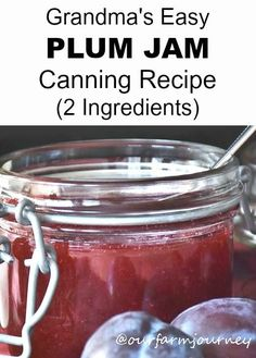 Grandma's Easy Plum Jam Canning Recipe (2 Ingredients) Fall canning is upon us! I love fresh plum jam and I am sure to buy them when they are in season, they taste so much better when used for jam and you will save some money. And of course you will find great deals and quality at...