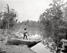 "Putnam County, Florida, circa 1890s. ""Rice Creek near Brown's Landing."" A tributary of the St. Johns River near Palatka. 8x10 inch glass negative by William Henry Jackson. View full size."
