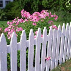 I want my yard FULLY fenced so that we will be more comfortable with getting a dog.