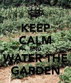 Keep calm. water the garden.                        RP BY HAMMERSCHMID