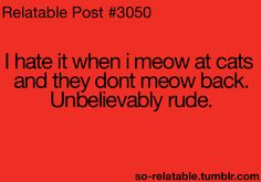 I hate it when I meow at cats and they don't meow back. Unbelievably rude