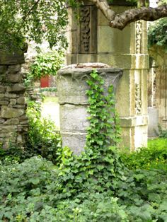 Ghent St. Bavo Abbey. Recently, the former abbey church rose from its ashes, not in stone, but in greenery. Five-meter high hornbeam pillars evoke the lost church.