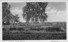 Panorama richting Loenen vanaf Hameinde