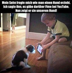 ...YOUTUBE Hundeerziehung...☺
