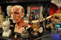 Nautilus, a wunderkammer-antique shop based in Turin, Italy