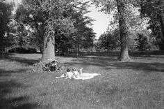 Jeunes filles allongées dans le parc