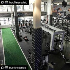 The best independent gym in South Africa!  maybe even the world  You be the judge!   #southafrica #capetown #gym #fitness #facility #nextlevel #best #transformation #progress #gymmotivation #epic #loveit #home #sweat #workforit #gains #shredded #cardio #igdaily #igfitness #fitfam by m.d.carroll_ifbb