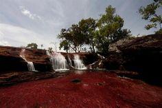 Άνδεις Καταρράκτης στο Εθνικό Πάρκο Sierra de La Macarena στον ποταμό που λέγεται 'ποτάμι των 5 χρωμάτων'.