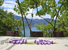 Villa Garda || Italy - Lombardy || A fantastic place to stay with 3 bedrooms and many amenities like whirpool, sauna and swimpond. Facing panoramic views of Lake Garda and is surrounded by ancient olive trees and beautiful gardens. #italyvillas #lombardyvillas #Luxury #Villas #LuxuryVillas #Italy #LakeGarda #Garda #Lombardy #Rental #Travel #LuxuryLife #LuxuryLifeStyle #LuxuryTravel #luxuryhomes (Pinned by #Casalio - www.casalio.com) Our travel blog - casaliotravel.com