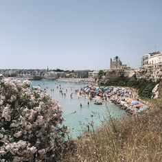 Puglia - The Travel Guide — Lilaproject Big Pizza, Food Spot, Do Anything, Public Transport, The Locals, Tuscany, Travel Guide, Dolores Park, Italy