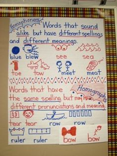I heart anchor charts!  Homophone and Homograph anchor charts. Very tricky for primary grades.