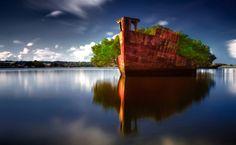 Mais um lugar incrível para você visitar e se encantar: navio abandonado na Austrália, que se transforma em uma linda floresta flutuante!