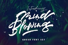 Mind Blowing 3 Brush Font Set 40%OFF by Dirtyline Studio on @creativemarket