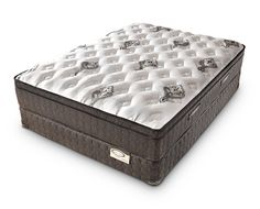 Doctor's Choice Euro Top - Denver Mattress