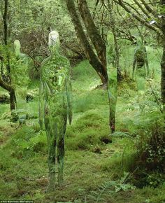Sculptures in a Scottish forest