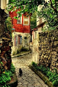 Cobbled Footpaths of Istanbul, Turkey Places Around The World, The Places Youll Go, Places To See, Around The Worlds, Beautiful Streets, Beautiful World, Beautiful Places, Naher Osten, Destination Voyage