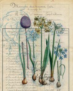 Floral Tea Towel Blue Bulbs