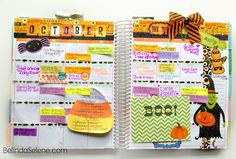 BelindaSelene: How I Decorate and Organize My Erin Condren Life Planner