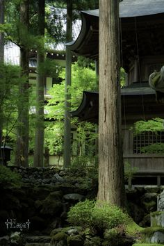 Eihei-ji, Zen temple, Fukui, Japan    www.liberatingdivineconsciousness.com