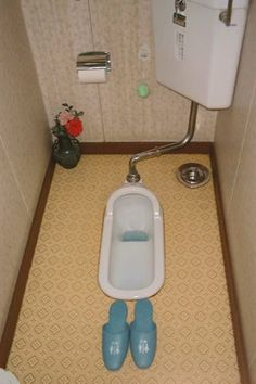 This is a traditional type of toilet of Japan.@There is always a separate room for the toilet.