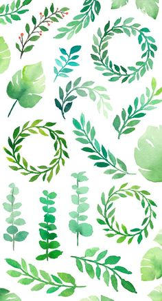 Watercolor Graphics Pack / saint patrick's day / st patricks day / st paddy / st patty / green / foliage / leaves