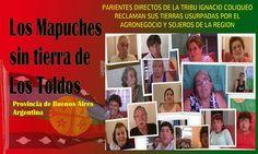 Ecos de la Tribu de Coliqueo: SOJEROS DE LOS TOLDOS ROBAN 3,5mil Has. de CAMPOS ...