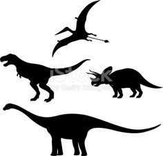 Dinosaurs Images | SpiderPic Royalty Free Stock Photos