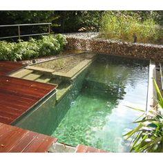 Des piscines naturelles ecologiques