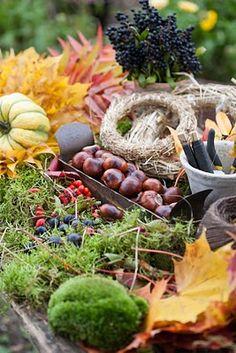 tinywhitedaisies: (via Blomsterverkstad: Höstlöv * Autumn leaves) Mabon, Samhain, Harvest Time, Fall Harvest, Harvest Moon, Autumnal Equinox, Autumn Decorating, Fresco, Sabbats