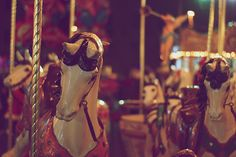 Christmas Carousel ~ 14/52 Project