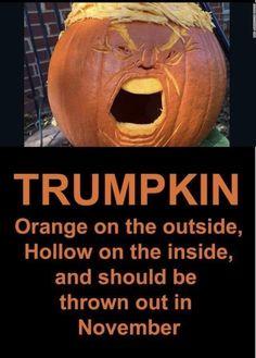 Biden Trump Memes, Election Memes, Bradley Whitford, Funny Memes, Jokes, Hilarious, Humor, Best Funny Pictures, Dumb And Dumber