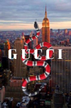 Gucci wallpaper design