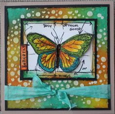 handmade mixed media card from Michelle's Cards & Stamps ...wonderful butterfly as focal image ...  luv the Distress Ink colors she used ... watercolor ... stencil paste dots ... Distress Glaze ... colored the white ribbon to aqua ... some Glossy Accents ...