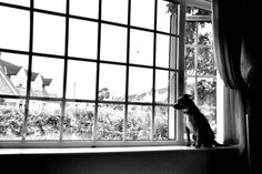 """""""Waiting"""" 35 mm Black and White film Photography"""