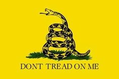 Founding Fathers on Freedom, Liberty and American Exceptionalism Metallica, Carolina Do Sul, Anti Intellectualism, American Exceptionalism, Gadsden Flag, Image T, Dont Tread On Me, I Wallpaper, Founding Fathers