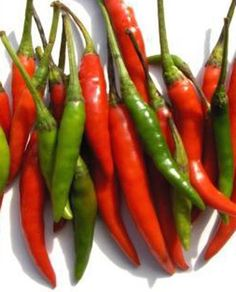 Chilies are excellent source of Vitamin, A, B, C and E with minerals like molybdenum, manganese, folate, potassium, thiamin, and copper. Chili contains seven times more vitamin C than orange.     Ever since its introduction to India in 1498, chilies have been included in Ayurvedic medicines and used as tonic to ward off many diseases. Chilies are good for slimming down as it burns the calorie easily. Chilies stimulate the appetite, help to clear the lungs, and stimulate digestive system…
